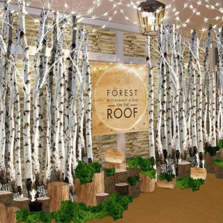 forest-on-the-roof