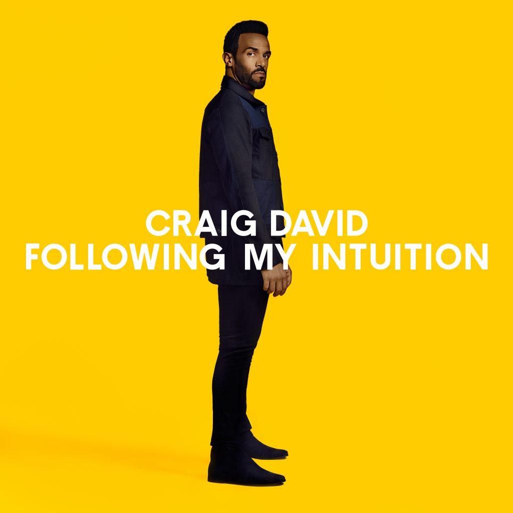 Craig_David_Standard_Vinyl_